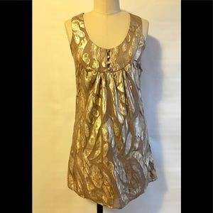 Anthropologie By Francine Metallic Silk Dress Sm
